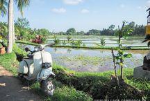 INDONESIE / Envie de vous en évader en Indonésie ? Voici ma sélection d'épingles sur les paysages, destinations en Indonésie