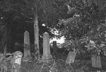 Belle Witch / John Bell Sr., who made his living as a farmer, resided with his family in Adams, Tennessee in the early 1800s. In 1817 his family came under attack by a witch. Various accounts written after tell stories similar to other poltergeist legends. It began with noises in the walls and grew to include unusual sounds, people being slapped and pinched, objects being thrown, and animals being spooked without visible cause.