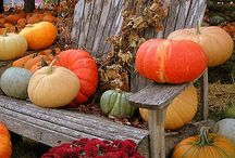Efterår / Billeder, natur og civilisation