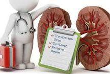 Obat Ginjal Alami / Cara alami mengobati gagal ginjal