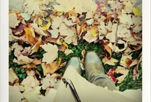 """""""Fall"""" ing in love with autumn / by Stefanie Rae"""