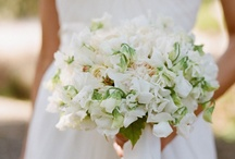 Our Wedding / by Jen Moss - PosePrints.com