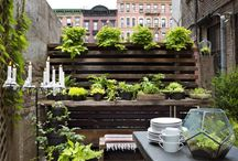 HOME - tiny spaces grate ideas