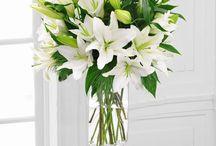 Beautiful Flowers!!