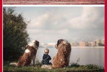 psi a děti