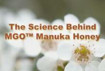 Manuka Oil and UMF Manuka Honey