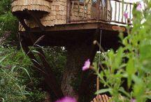 Круглый Дом На Дереве