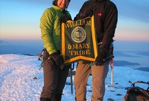 Tribe Pride around the world / by College of William & Mary