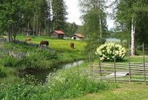 Sweden - Dalarna