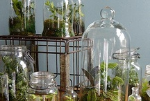 Glass jar ideas