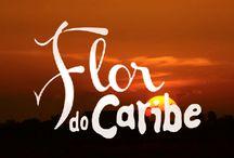 Casa de Novela - Flor do Caribe / Decoração das casas da novela Flor do Caribe / by Casa de Novela