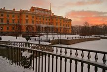 The Palaces Of St. Petersburg.
