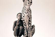 Umano/animale