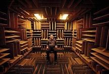 Acoustic treatments// interior design