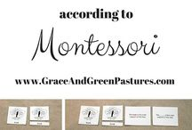 Montessori Theory