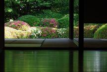 Tuinieren / Binnen- en buiten planten