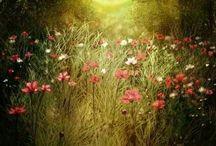 Сохам -Цветок
