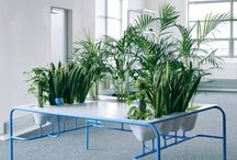 /DESIGN & FURNITURE / Design and Furniture