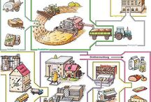 kenyér projekt