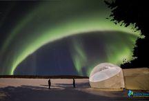The Aurora Bubble / The Aurora Bubble - Exclusive to The Aurora Zone!