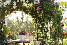 Country Gardens / Flower Gardens
