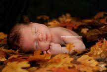 Newborn shoot / by Janine Gunter