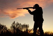 Best Hunting Tips and Ammo Sales