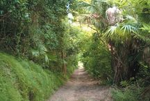 How To: Have an Adventure Weekend in Bermuda / Vacations are supposed to be filled with adventures and life-changing experiences. Learn how to make your trip to Bermuda just that: http://bit.ly/AdventuresInBermuda