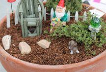 Fairy/Gnome Gardens