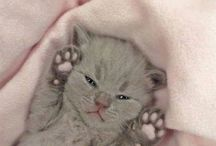 cute!!xx
