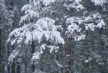 Zima w Zagrodzie / Fotografie przedstawiające Zagrodę w zimie