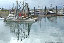 Cordova, Alaska / Home of Copper River Salmon