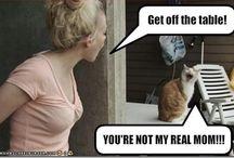 Funnies!