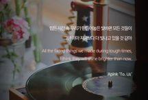 Korean qts
