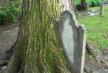 Eternal -- Cemeteries & Tombs