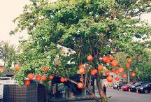 Hotspots Seminyak - Bali / De leukste hotspots