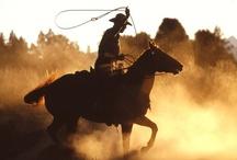 Country Lovin' / by Jennifer Miller