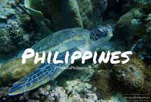 Philippines Travel Guide / Different adventures in the Philippines. This board would help travelers who plans to visit the Philippines. It includes snorkeling, cliff diving, walk tours, hiking, biking, swimming, road trips, restaurants, must try, food hops, food trips, different attractions, events and festivals that the Philippines may have.