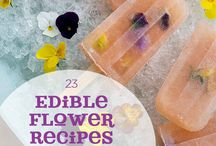 Chic Recipes with Edible Flowers / Drinks & Food