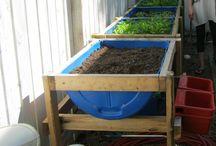 Ideas for the garden / Gardening, planting, flowers, plants, beautiful gardens, garden tools, diy garden....