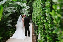 Island Hotel Newport Beach Weddings / Weddings at the Island Hotel in Newport Beach, CA