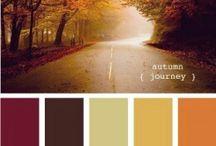 farby do bytu