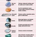 Animal Healing / Everything around animal healing
