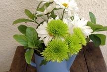 Flores con gracia