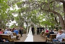 Payne's Prairie / Florida State Park in Micanopy.  Perfect for a small outdoor wedding site.  Park entrance is $3 pr vehicle.
