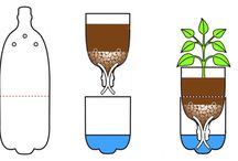 Nápady pro pěstování