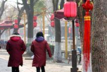 Travel - Shanghai / #travel #shanghai #china  / by She's Cookin'