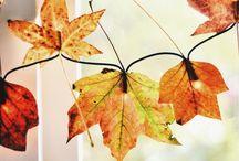 Høst og Halloween dekorasjon