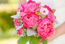 Florals Pop of Color