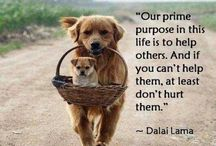 "The Love Quotes Celebrity Quotes : ""Our prime purpose in this life is to help others.  And if you can't he…"
